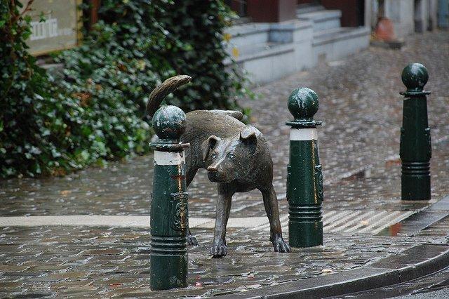 zinneke-pis estátuas que fazem xixi em Bruxelas