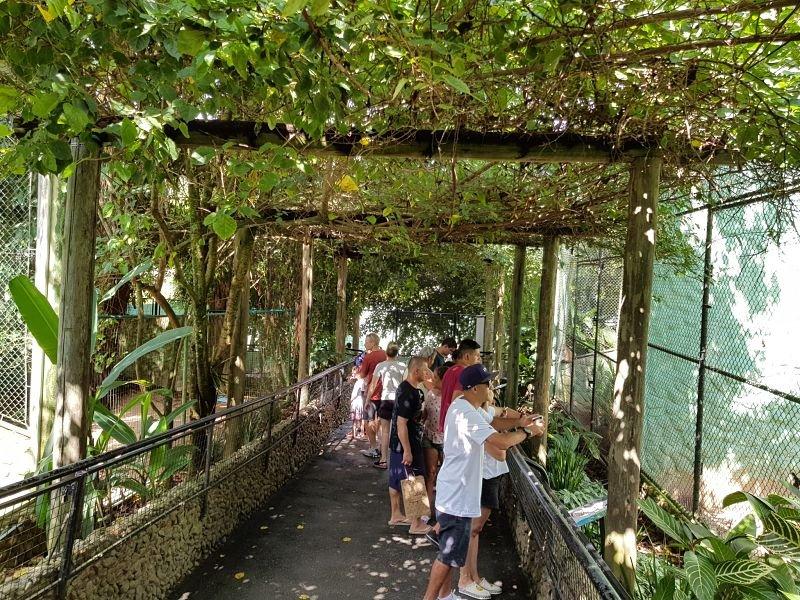 Zoo Pomerode interior1
